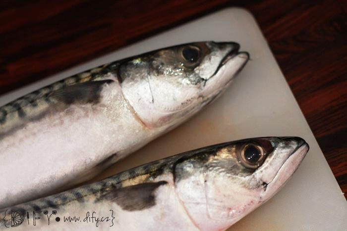 Ryba pečená v soli - jakákoliv ryba je skvělá!