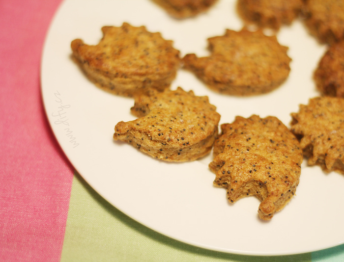 Celozrnné vinné sušenky s mákem a pálivou paprikou