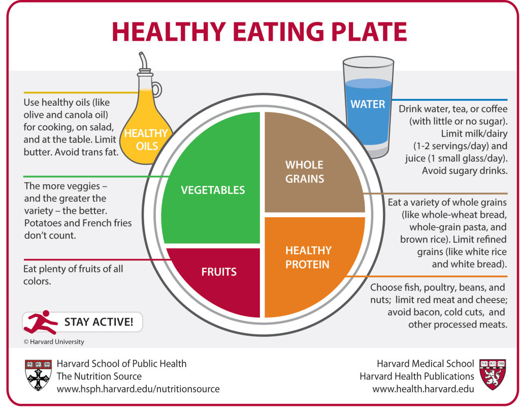 Výživová doporučení: Healthy Eating Plate - Zdravý talíř