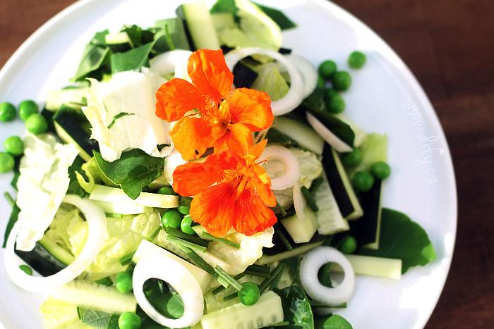 Letní zelený salátek s listy řeřichy