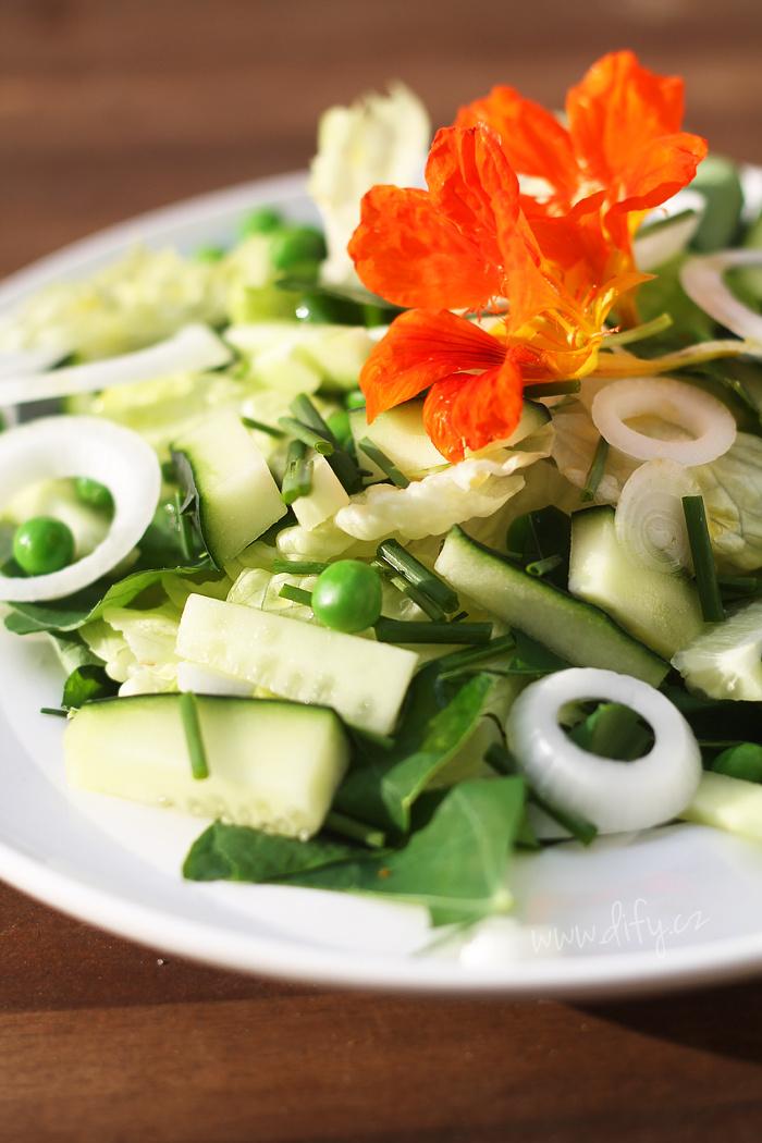 Letní zelený salátek s listy řeřichy a pažitkou