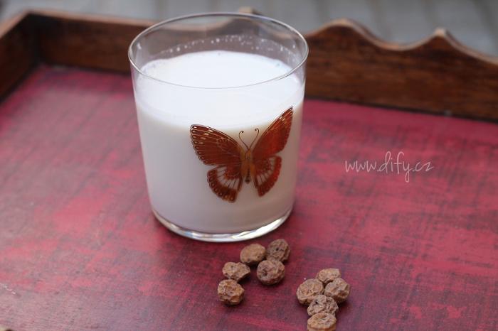 Španělská horchata - mléko vyrobené z chufy