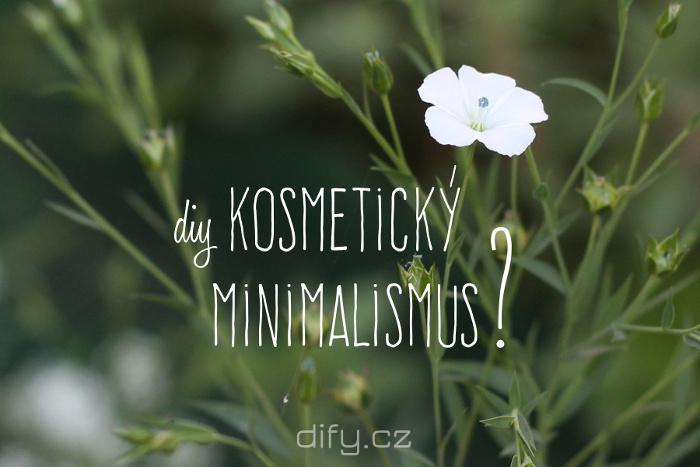 Diy kosmetika, cesta k minimalismu